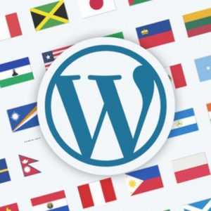 Site WordPress Multi-idioma